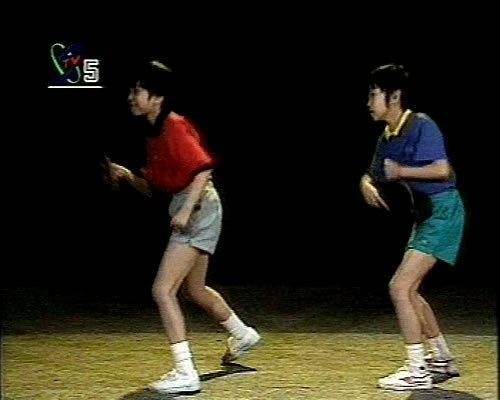 《乒乓球基本技术全12集》国家二队及国家一队的队员示范[RMVB]